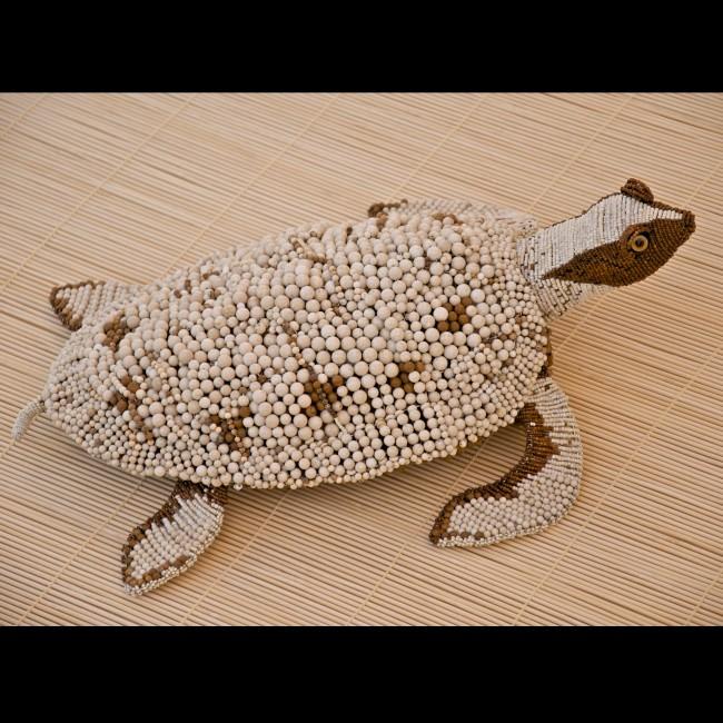Zuri Turtle